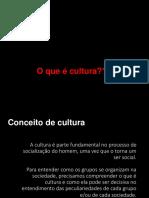 01-sociedade e cultura.ppt