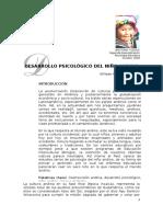 Psicología Del Niño Andino (Roque, W).