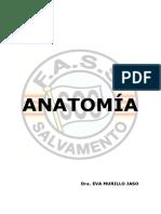 FASS Anatomia