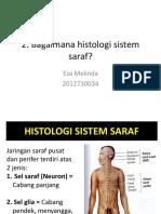 2. Histologi Sistem Saraf