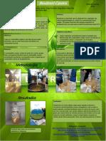 Biodiesel Final Impresion 110x80