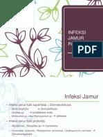 Bimbingan Infx Jamur