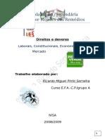 Trabalho de Ricardo Serralha Dr2 Direitos Economicos e Direitos Laborais Versao 3