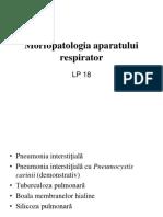 18 Morfopatologia Aparatului Respirator II