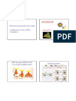 t2_interacao cel-virus e replicacao virus dna 2008.pdf