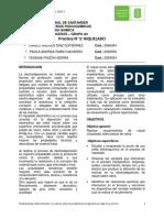Informe-Terminado-Niquelado.pdf