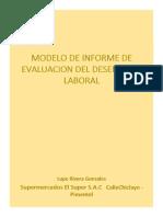 modelo de informes de evaluacion de desempeo laboral.pdf