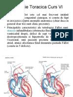 Chirurgie Toracica VI