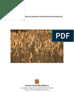 Sistemas autonomos depuracion.pdf