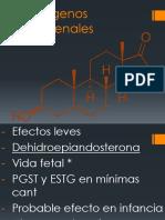Andrógenos suprarrenales.pptx