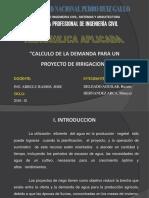DEMANDA PARA UN PROYECTO DE IRRIGACION.ppt