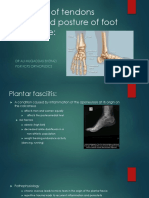 Tendon Disorders of Foot and Ankle [Autosaved]2
