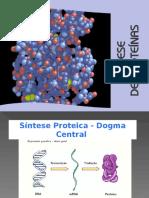 sintese proteíca