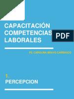 Presentacion Competencias Laborales