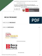 PRONABEC - Programa Nacional de Becas y Crédito Educativo _ Becas en Perú _ Youtube _ Facebook _ PRONABEC