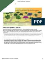 Cómo Elegir Qué Árbol Plantar - UNIDIVERSIDAD
