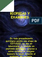 Biopsias y Examenes