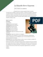 Historia de La Filosofía (De La Guía)
