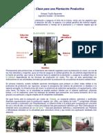 El Semillero Forestal Viveros MyM