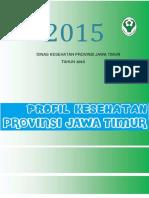 Profil Dinkes Prov Jatim 2015