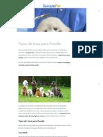 Tipos de Tosa Para Poodle - Geração Pet