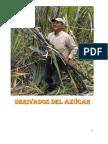 DERIVADOS DEL AZUCAR.docx