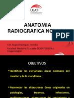 Anatomia Radiografica Normal Si