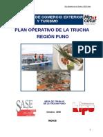 360884278-POP-Trucha-Final-Puno.doc
