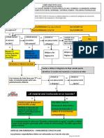 Diagrama de Flujo de Guía GREE 2016