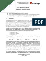 Laboratorio 9 -2013- Aglomerado y Lixiviación Columnar