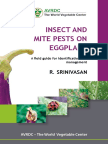 Eb0122_Insects and Mite Pests on Eggplants