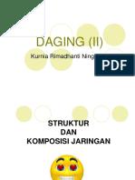 3. DAGING II