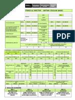 Ficha Monitoreo AlDirector 2017