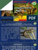 Sanidad Agrícola 2017.pdf