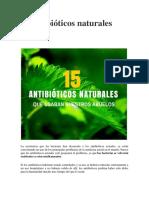 15 antibióticos naturales2