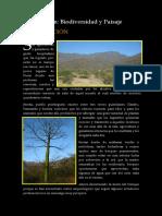 serran_01.pdf