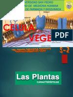 Fisiologia Vegetal S-2