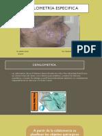 Cefalometría especifica