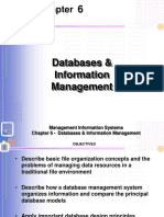 MIS_Chapter_6_ Database & Information System