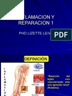 INFLAMACIÓN-REPARACIÓN-1
