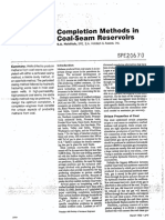 Completion Methods in Coal-seam Reservoirs