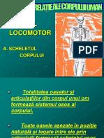 Functiile de Relatii Ale Corpului Uman.ppt87653
