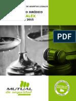 ACTUALIZACION-LEYES-Enero2015.pdf