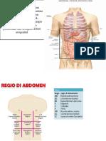 anatomi modul 3 uro.pptx