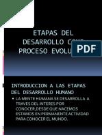 Estructura Academica Sistema Educativo Dominicano-tarea 6
