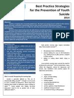 Youthline Best Practice Suicide 2014