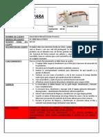 Ficha de Seguridad Para Amarradora Manual (Procesos)