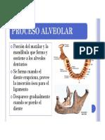 PROCESO ALVEOLAR.pdf