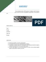 nanofibras (1)