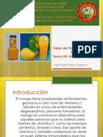 20 Elaboración Nectar de Mango
